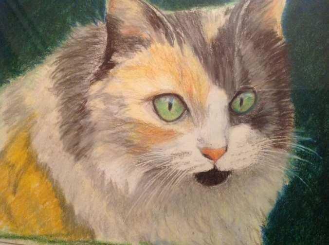 Eunit Cat